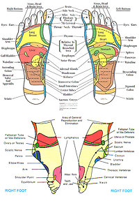 About Reflexology. Feet2